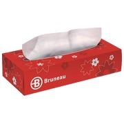 Handkerchiefs Bruneau
