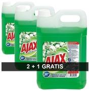 Pack 2 bussen Ajax Lentebloemen + 1 gratis