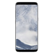 Samsung Galaxy S8+ - poolzilver - 4G HSPA+ - 64 GB - TD-SCDMA / UMTS / GSM - smartphone