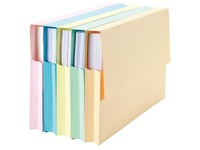 VIP, pack of 50 folders, A4, pastel colours