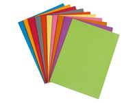 Standard file folder 210 g Bruneau 24 x 32 cm assorted colours - Pack of 10