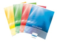 Notepads Splendid A4 210 x 297 mm 5 x 5 100 sheets