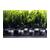 groen natuur planten interieur gezelligheid sfeer  bloempotten